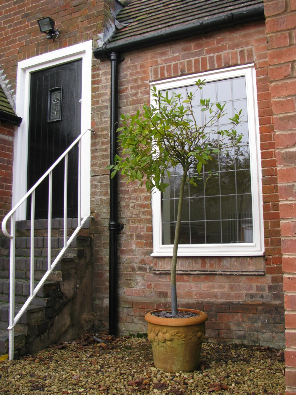 Timber Windows with red brick